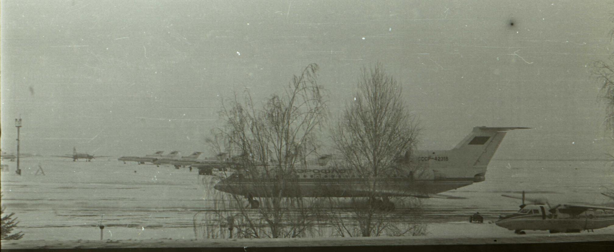 DNK_01.1988.jpg