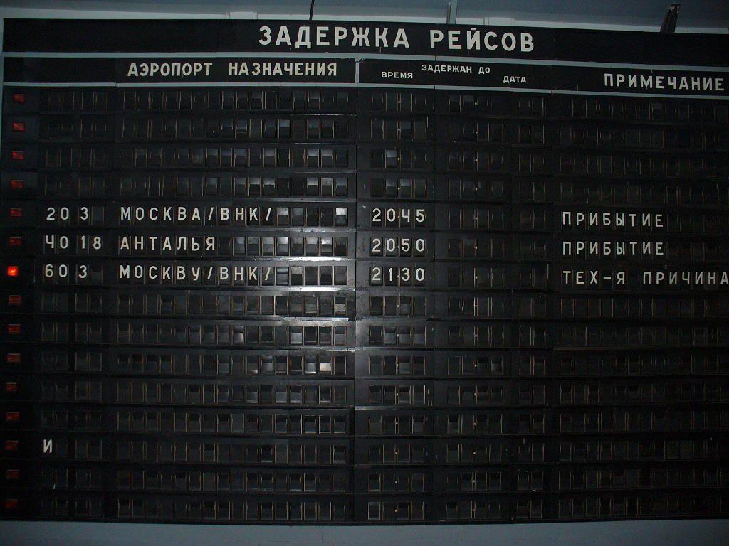 194626(1).JPG